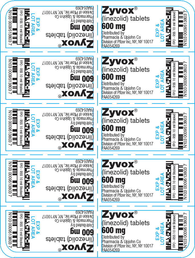 PRINCIPAL DISPLAY PANEL - 600 mg Tablet Blister Pack - NDC 0009-5138-03